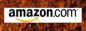 Stone Wall with Amazon Logo